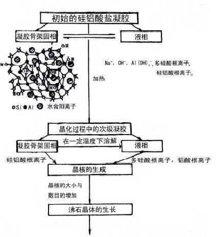 液相转变机理图