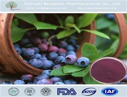 蓝莓提取物,Blueberry extract