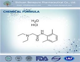 盐酸利多卡因,Lidocaine HCL