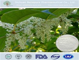 白藜芦醇,Resveratrol