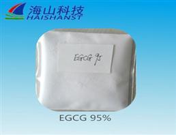 (-)- 表儿茶素没食子酸酯 (ECG,(-)-Epicatechin gallate