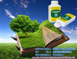 乳酸链球菌素