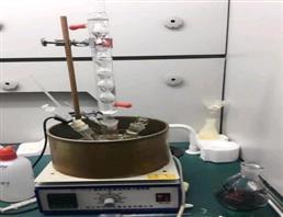 4-Amino-N-methylaniline