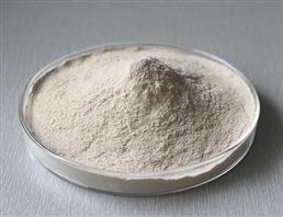 Fish Collagen (Hydrolyzed) USP/JP